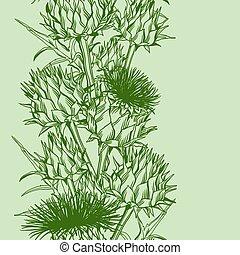 Seamless pattern with onopordum acanthium. Scottish thistle