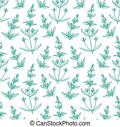Seamless pattern with savory. Summer or spring background. ...