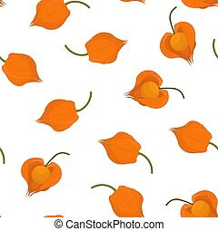Seamless pattern with the image of physalis berries on a white background