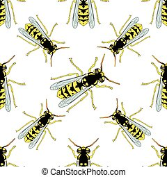 Seamless pattern with Wasp . hand-drawn Wasp . Vector