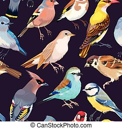 Seamless patterns with birds - High detailed song birds...