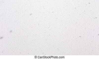 Seamless loop of real dense snow falling from an overcast sky. Perfect background for winter related themes. Recorded in RAW.