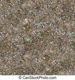 seamless, textura, de, rochoso, steppe, soil.