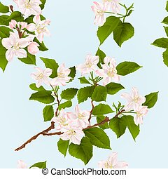 Seamless texture apple tree branch  with flowers and buds vector.eps