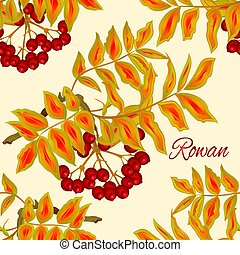 Seamless texture Autumn branch of rowan leaves and berries Vector