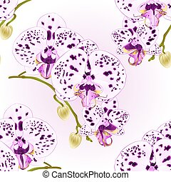 Seamless texture beautiful  Orchid purple with dots  stem  vector.eps