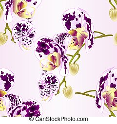Seamless texture beautiful  Orchid spotted white and purple stem vector.eps