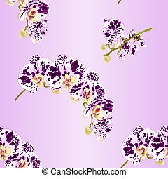 Seamless texture beautiful  Phalaenopsis Orchid spotted white and purple stem vector.eps