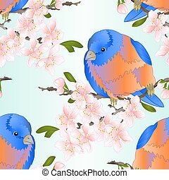 Seamless texture bird small thrush Bluebird on a sakura cherry branch watercolor vector.eps