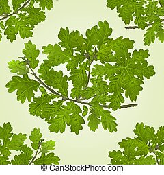Seamless texture Branch of oak with acorns natural background vector