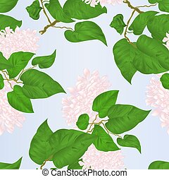 Seamless texture branch of white lilac flowers vector