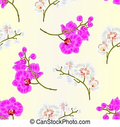 Seamless texture branches orchid Phalaenopsis purple and white flowers tropical plants  vintage  vector.eps