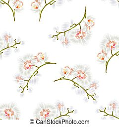 Seamless texture Branches orchids Phalaenopsis White flowers tropical plants green stem and buds  vintage  vector.eps