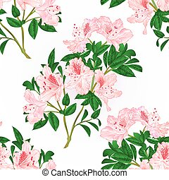 Seamless texture light pink rhododendron twig vintage vector...