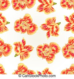 Seamless texture Lily Alstroemeria closeup natural...