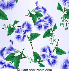 Seamless texture Morning glory blue spring flower.eps -...