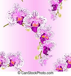 Seamless texture  Orchid   purple and white stem vector.eps