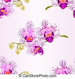 Seamless texture Orchid purple and white stem with flowers and  buds vintage  vector.eps