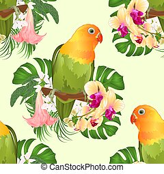 Seamless texture Parrot Agapornis lovebird and Brugmansia with orchid vector