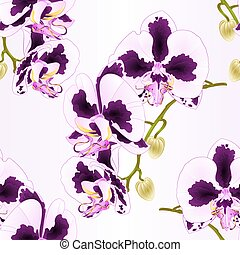 Seamless texture stem Orchid Phalaenopsis with spots purple and  white vector.eps