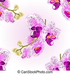 Seamless texture stem   Orchid purple and white.eps