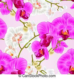 Seamless texture stem with flowers and  buds beautiful orchid  purple and white   vector.eps