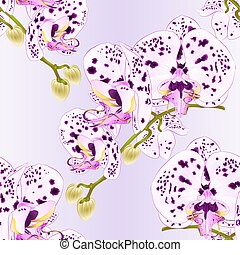 Seamless texture stem with flowers and  buds orchid with dots  vector.eps
