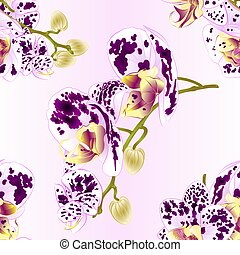 Seamless texture stems with flowers and  buds Orchid Phalaenopsis spotted vector.eps