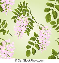 Seamless texture Locust tree twigs with flowers and leaves watercolor vintage vector illustration editabe hand draw