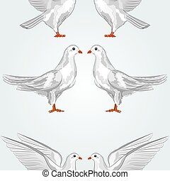 Seamless texture white dove vector.eps