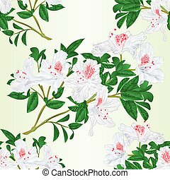Seamless texture white rhododendron twig vector.eps -...