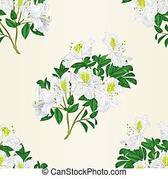 Seamless texture white rhododendron twig vintage vector - ...