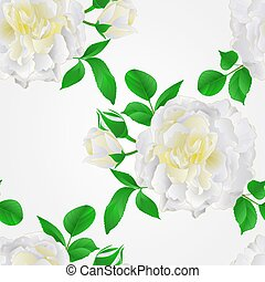 Seamless texture White Rose with buds and leaves vintage vector.eps