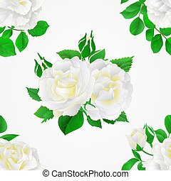 Seamless texture white Roses with buds and leaves vector.eps