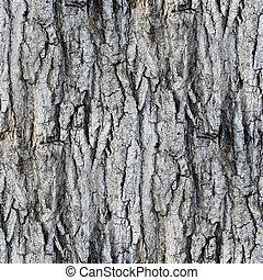 seamless texture white tree bark wallpaper gray background ...