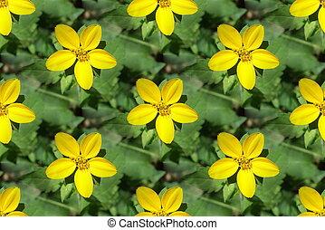 Seamless yellow flower-2