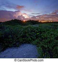 Seaport Cranes and Wild Coastline at Dusk in Fort Lauderdale, Florida, with lightning storm in background