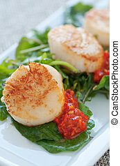 Seared Scallop Appetizer - Fresh seafood dish on sauteed...