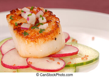 Seared scallop on a bed of radish and cucumber