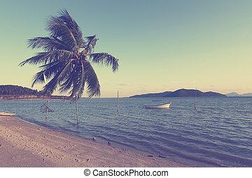 seascape, árvore, efeito, filtro, palma, vindima, pôr do sol