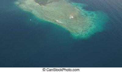 seascape coral reef in sea - seascape aerial view coral...