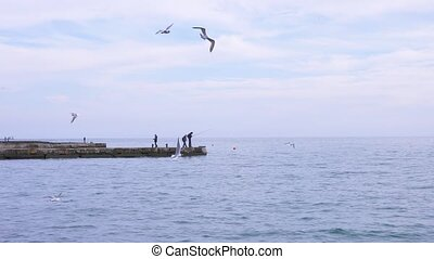 seascape. unrecognizable fishermen on the pier fish, seagulls fly over the sea 4k, slow-motion shooting