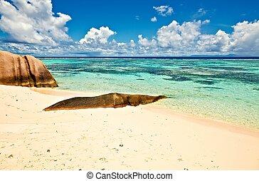 Seascape view