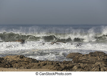 Seascape with sunny waves