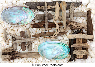 Seashell and Driftwood Abstract - Seashell and driftwood...