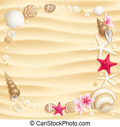 Seashell background - Frame of seashells and starfishes on...