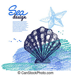 Seashell background. Sea nautical design. Hand drawn sketch and