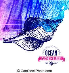 Seashell background. Sea nautical design.