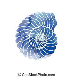 seashell, cercle, graphique