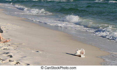 Seashell Collector - Mature woman picks up a seashell out of...